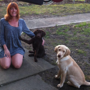 Robin P., Pet Care Provider in Lake Station, IN with 8 years paid experience