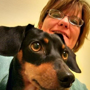 Stephanie D. - Archer Pet Care Provider