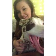 Alyssa S. - Swansea Pet Care Provider