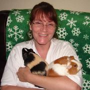 Karen S. - Brownsville Pet Care Provider
