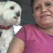 Dunia F., Nanny in Pomona, CA with 20 years paid experience