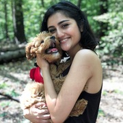 Muskan K., Pet Care Provider in Sterling, VA with 10 years paid experience