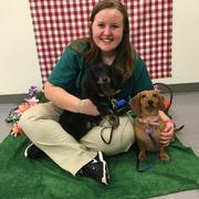 Lauren C. - Chesterfield Pet Care Provider