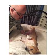 John M. - Little Rock Pet Care Provider