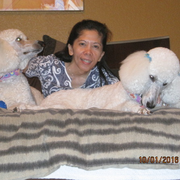Grace B., Pet Care Provider in Abilene, TX with 7 years paid experience