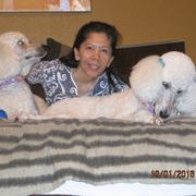 G. B. - Abilene Pet Care Provider