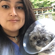 Jessica P., Pet Care Provider in Pleasant Valley, NY 12569 with 8 years paid experience