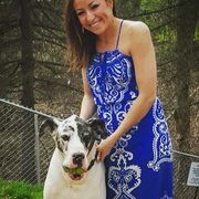 Amber H. - Martinsburg Pet Care Provider