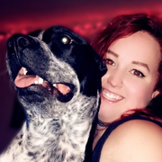 Lauren H., Pet Care Provider in Sunnyvale, TX with 8 years paid experience