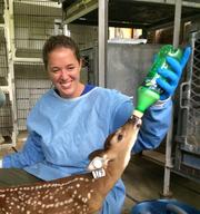Karen B. - Coarsegold Pet Care Provider