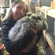 Allison O. - Geneva Pet Care Provider
