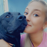 Aly G., Pet Care Provider in Port Huron, MI 48060 with 3 years paid experience