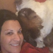 Find a Pet Sitter in Mayer, AZ - Mayer Pet Sitters - Sittercity