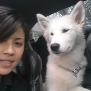 Eliana G. - Hampton Bays Pet Care Provider