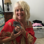 Joyce L., Pet Care Provider in Bradenton, FL 34209 with 2 years paid experience