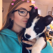 Madison S. - Port Charlotte Pet Care Provider