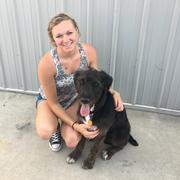 Jordan H. - West Lafayette Pet Care Provider
