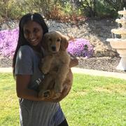 Anju K. - Simi Valley Pet Care Provider