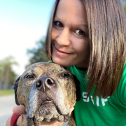 Korene S., Pet Care Provider in New Port Richey, FL with 6 years paid experience