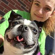 Bonnie C. - Naperville Pet Care Provider