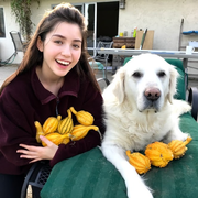 Jillian B. - Redding Pet Care Provider
