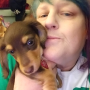 Stephanie A., Pet Care Provider in Salem, OR with 20 years paid experience