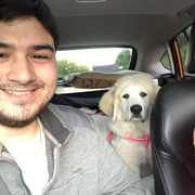 Liam R., Pet Care Provider in Palmer, AK with 2 years paid experience
