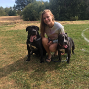 Hannah N., Pet Care Provider in Peoria, IL with 5 years paid experience