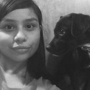 Marissa M. - Eagle Pass Pet Care Provider