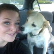 Brittney N. - Lynchburg Pet Care Provider