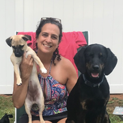 Deana E., Pet Care Provider in South Glens Falls, NY with 1 year paid experience