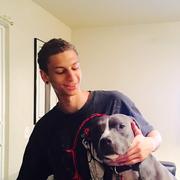 Kai S. - Santa Clara Pet Care Provider