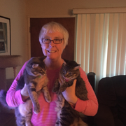 Nancy V., Nanny in Palo Alto, CA with 20 years paid experience