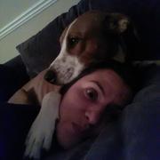 Barbara M. - Dickinson Pet Care Provider