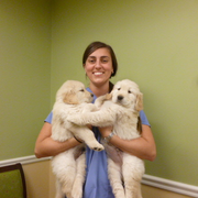 Chelsie G., Pet Care Provider in Montgomery, MA with 15 years paid experience