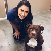 Mia C., Pet Care Provider in Yuma, AZ with 10 years paid experience