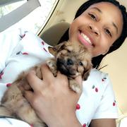Latavia H. - Hampton Pet Care Provider