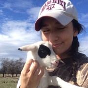 Hannah P. - College Station Pet Care Provider