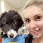 Courtney B., Pet Care Provider in Phoenix, AZ with 5 years paid experience
