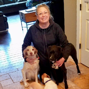 Melodee H., Pet Care Provider in Vancouver, WA with 10 years paid experience