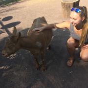 Jess B. - Pittsburgh Pet Care Provider