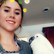 Samantha K. - Decatur Pet Care Provider