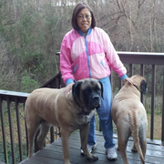 Teresa B., Pet Care Provider in Evans, GA with 5 years paid experience