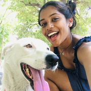 Kritika V., Pet Care Provider in Hastings, FL with 2 years paid experience