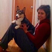 Elizabeth C. - Hollywood Pet Care Provider
