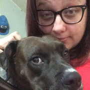 Destanie H. - Saint Helen Pet Care Provider