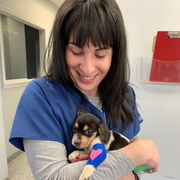 Jessica G., Pet Care Provider in Cary, NC with 6 years paid experience