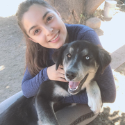 Luz H., Pet Care Provider in San Diego, CA with 1 year paid experience