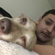 Guillermo S. - Uvalde Pet Care Provider