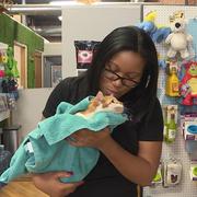Winnie D. - Omaha Pet Care Provider